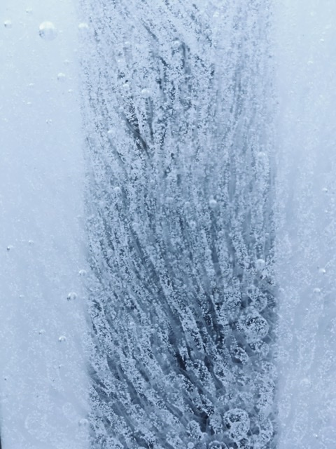 「内部」 雪珊瑚 snow❄️coral