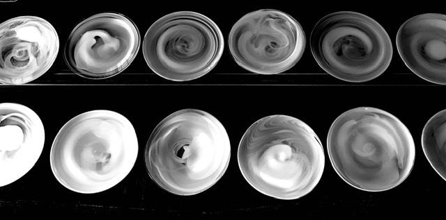 白の陰影 皿 制作記録