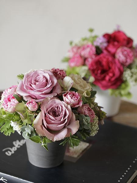 Rose Pot <S>サイズ スペシャルプライスのご案内