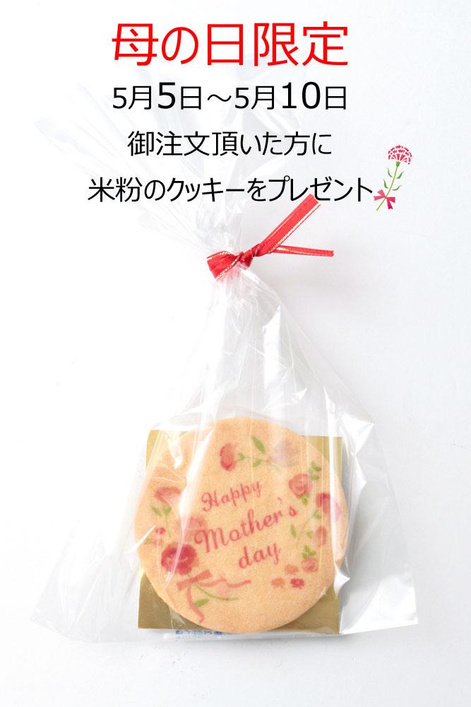 母の日限定 米粉クッキープレゼント