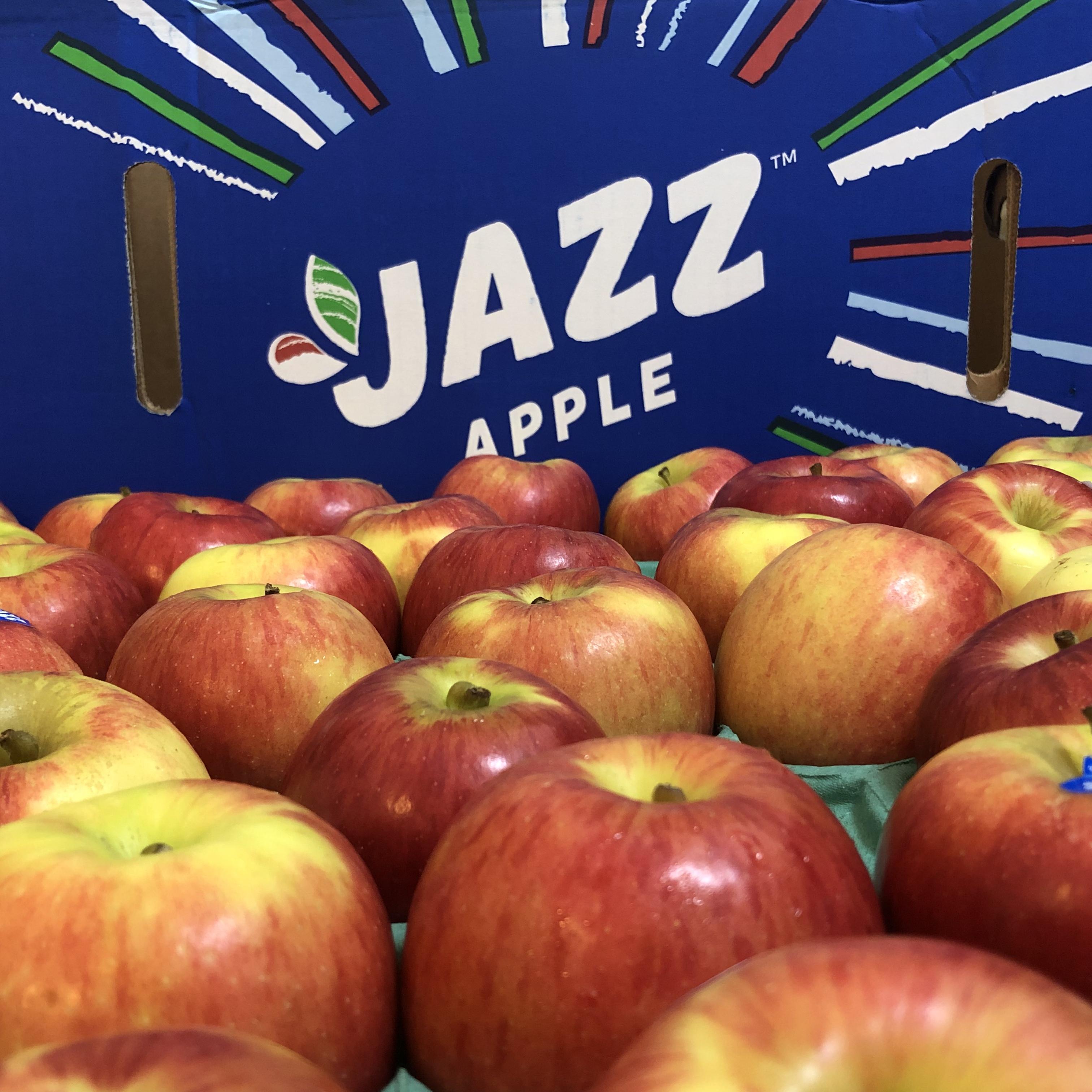 NZ産jazzりんご、期間限定です