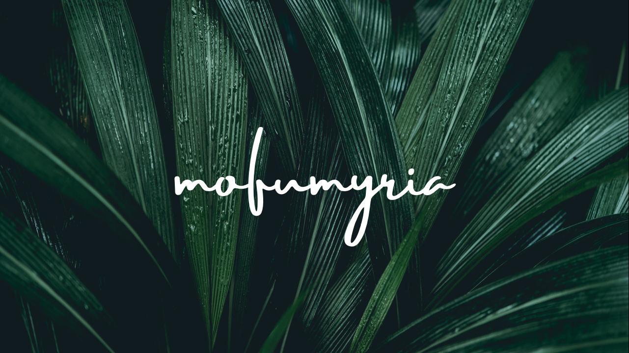 mofumyria - モフミリア -