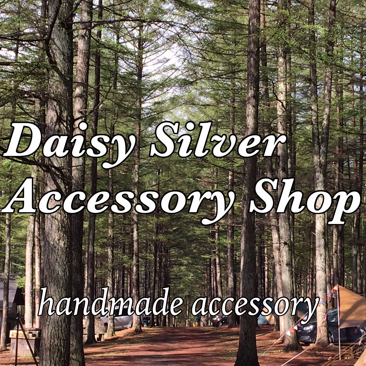 Daisy  Silver  Accessory Shop