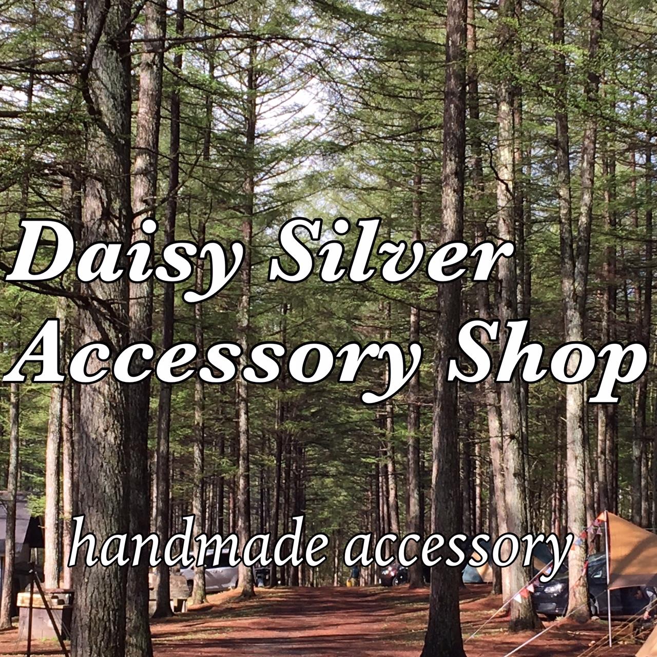Daisy  Silver  Accessory Shop