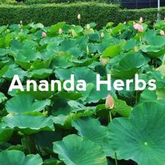 Ananda Herbs