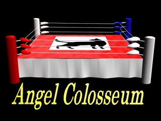 Angel Colosseum:女子プロレスビデオ制作