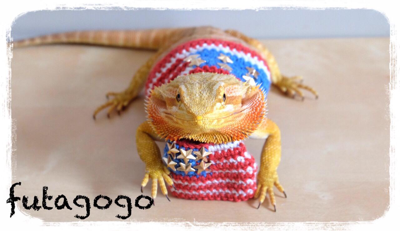futoagogo