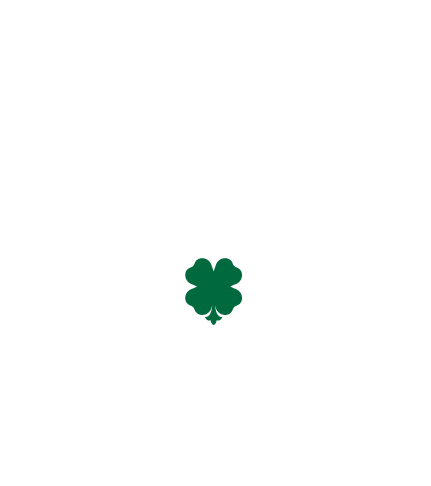 KOGA / GROOOVIE DRUNKER RECORDS WEB SHOP 2nd