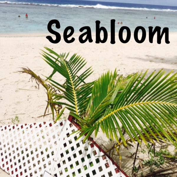 Seabloom*ベビードレス*子供服