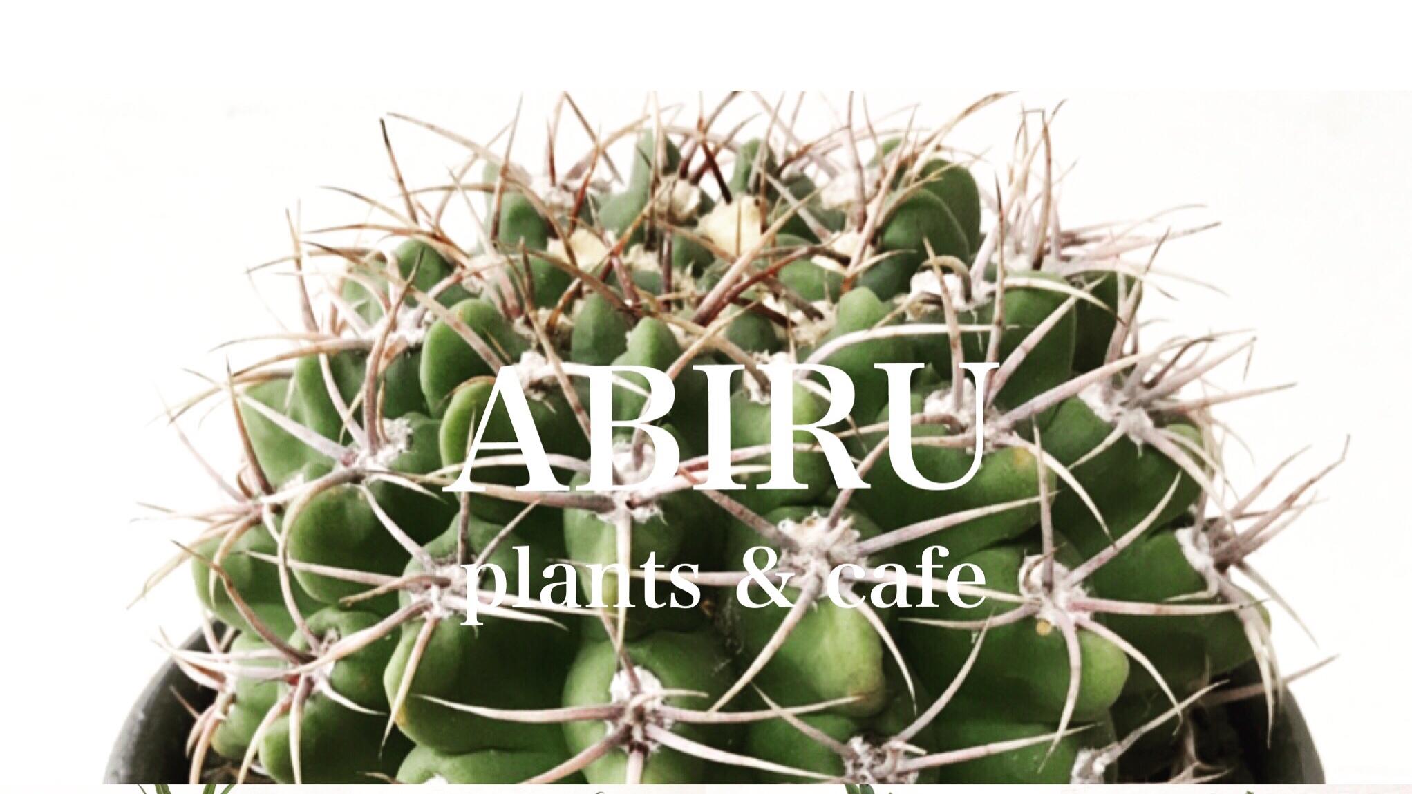 ABIRU plants&cafe