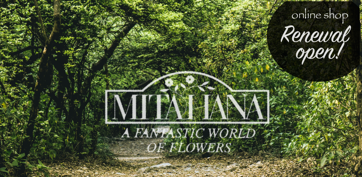 MITAHANA online shop
