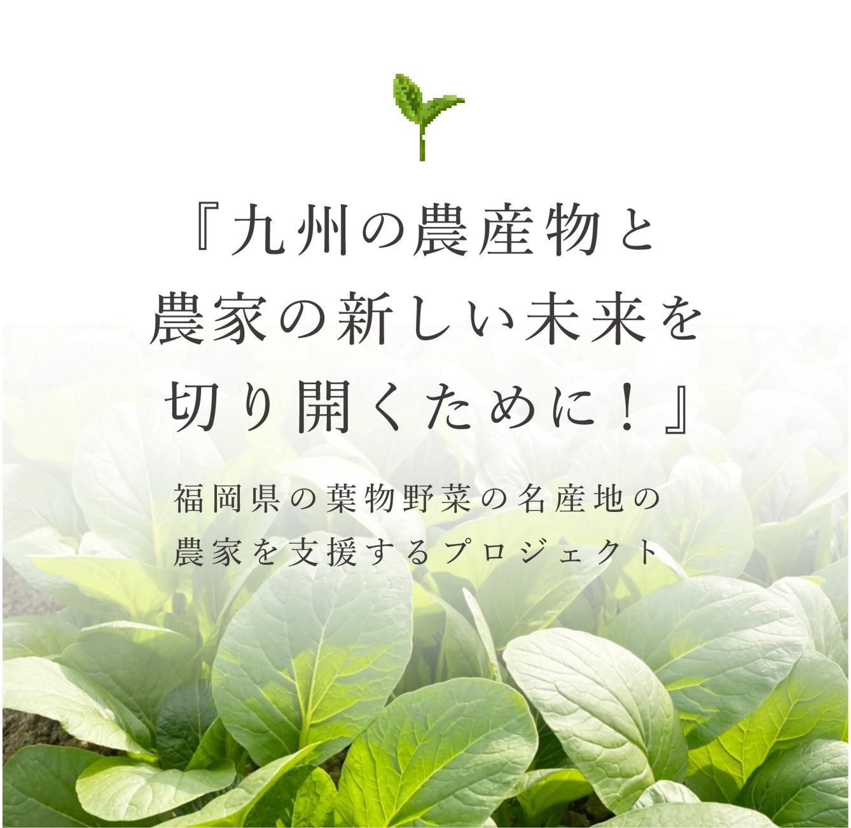 Green's Vegetable & Fruits「福岡県の葉物野菜名産地の農家を支援するプロジェクト」
