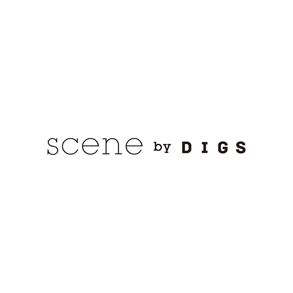 scene by digs