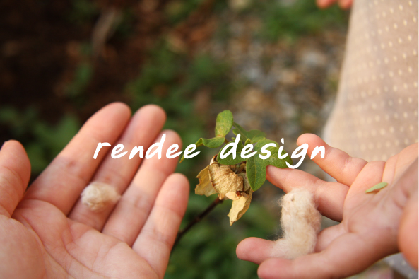 rendeedesign