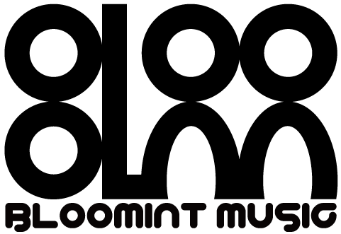 BLOOMINT MUSIC STORE