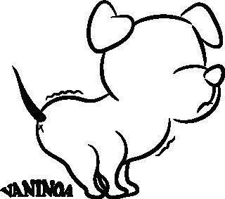 vaninoa