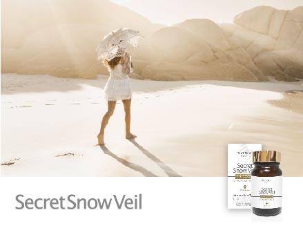 Secret Snow Veil