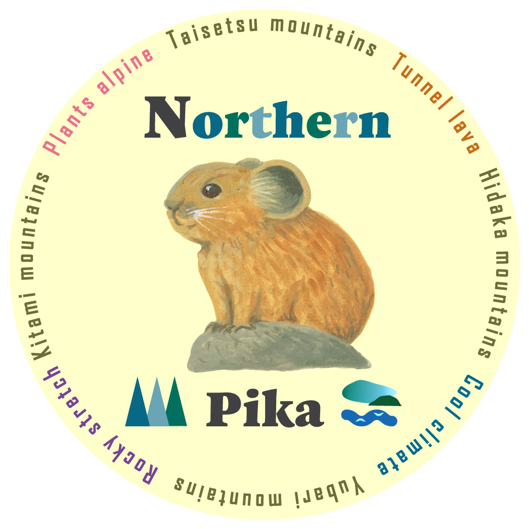 Northern Pika