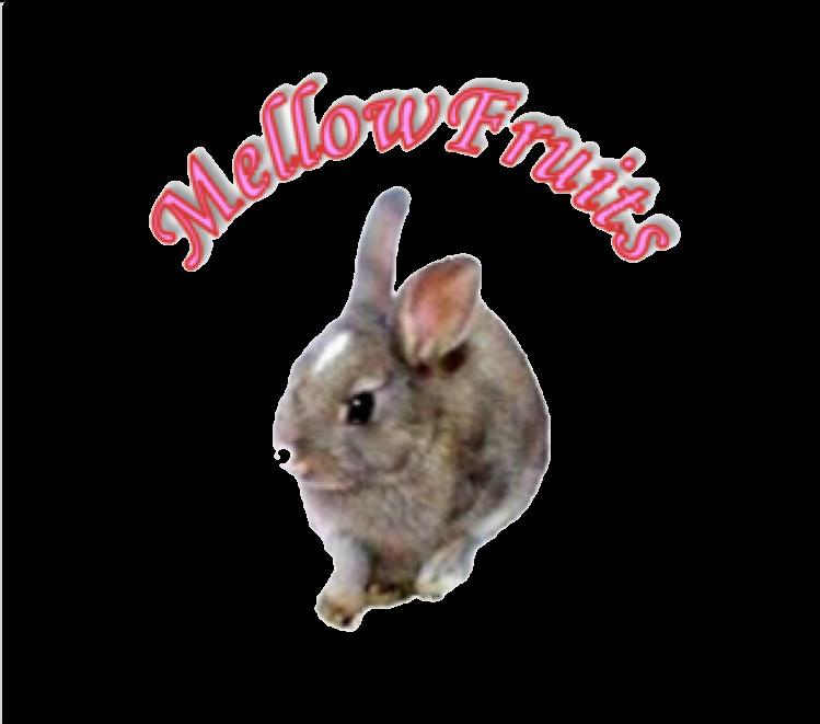 MellowFruits