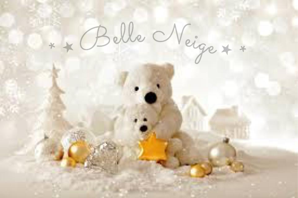Belle Neige ⋆*