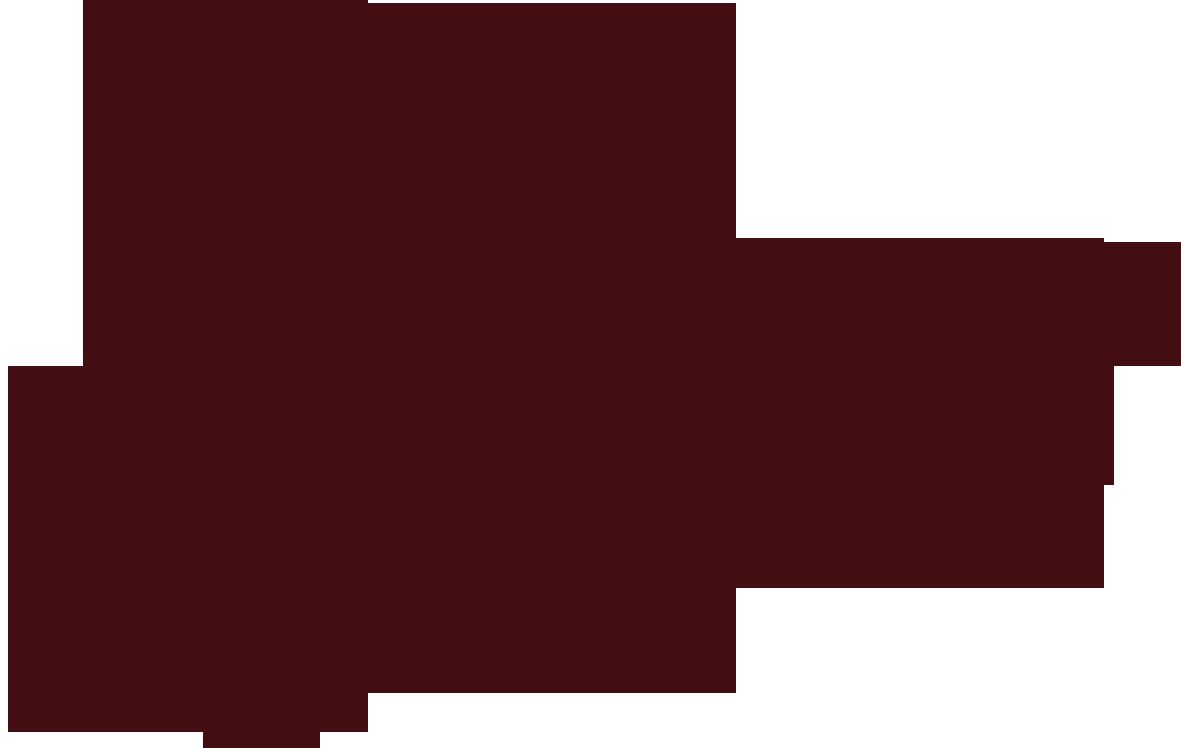 ワンちゃんの無添加手作りおやつ・ごはん専門店   Manawan
