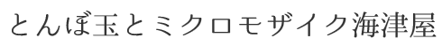 とんぼ玉とミクロモザイク 海津屋