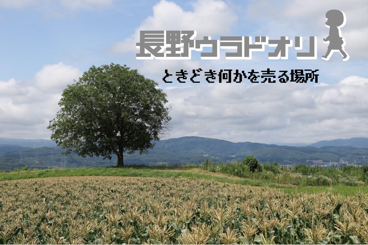 長野ウラドオリのお店