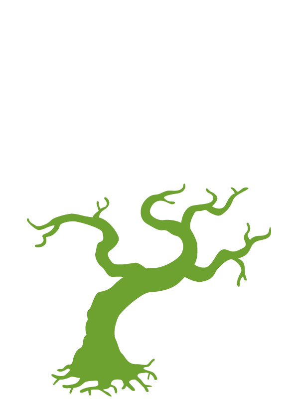 松田プレゼンツ WEBストア