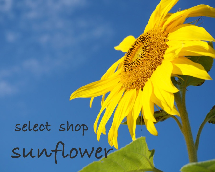 select shop  sunflower