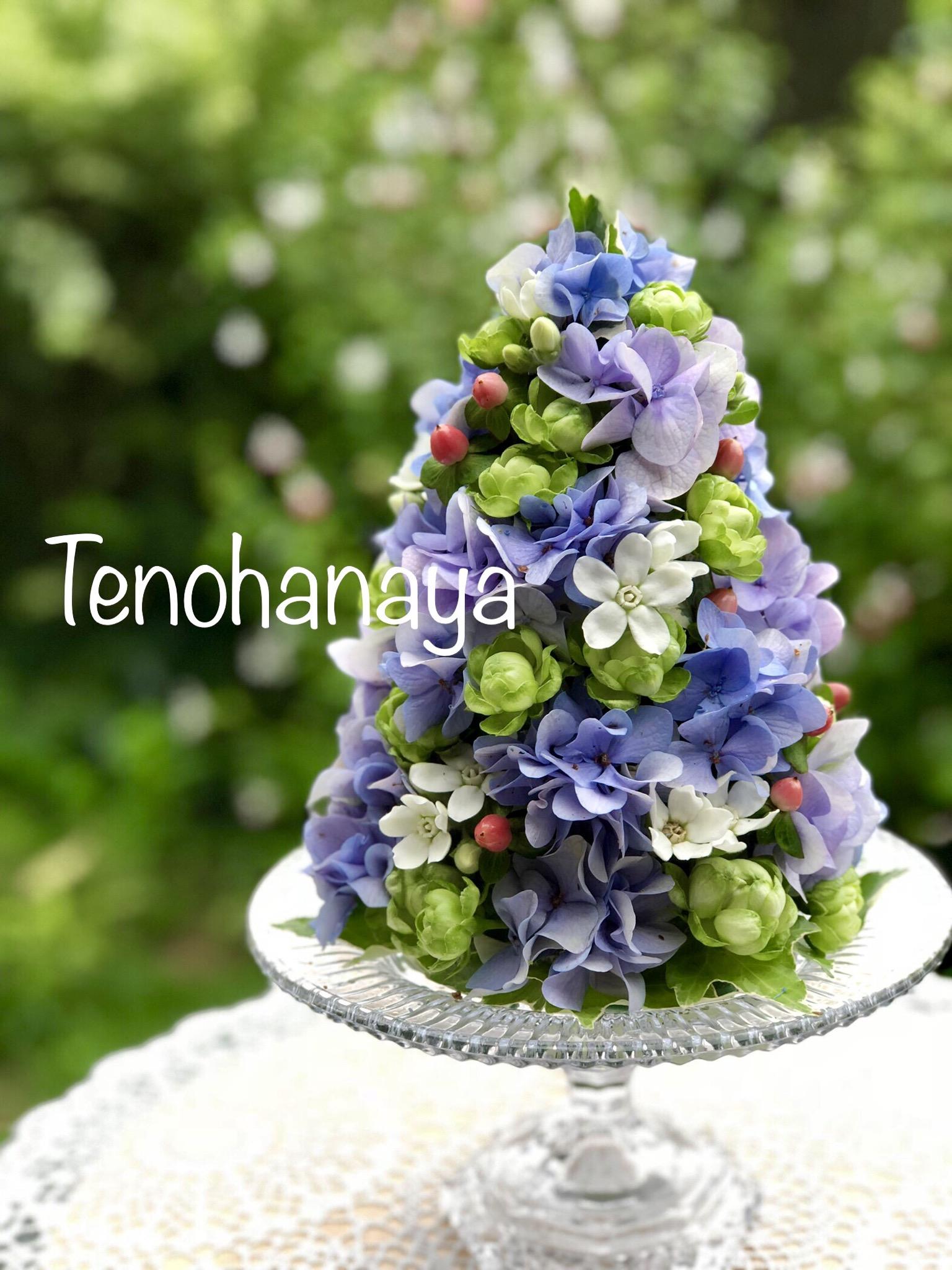 tenohanaya
