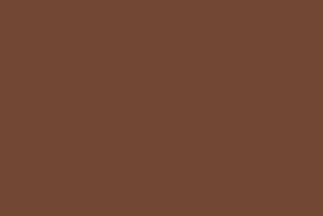 PACOON(パクーン):国産野菜でできた食べられるスプーン