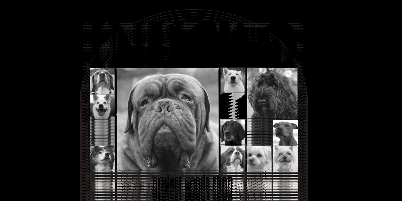 犬顔プロジェクトショップ