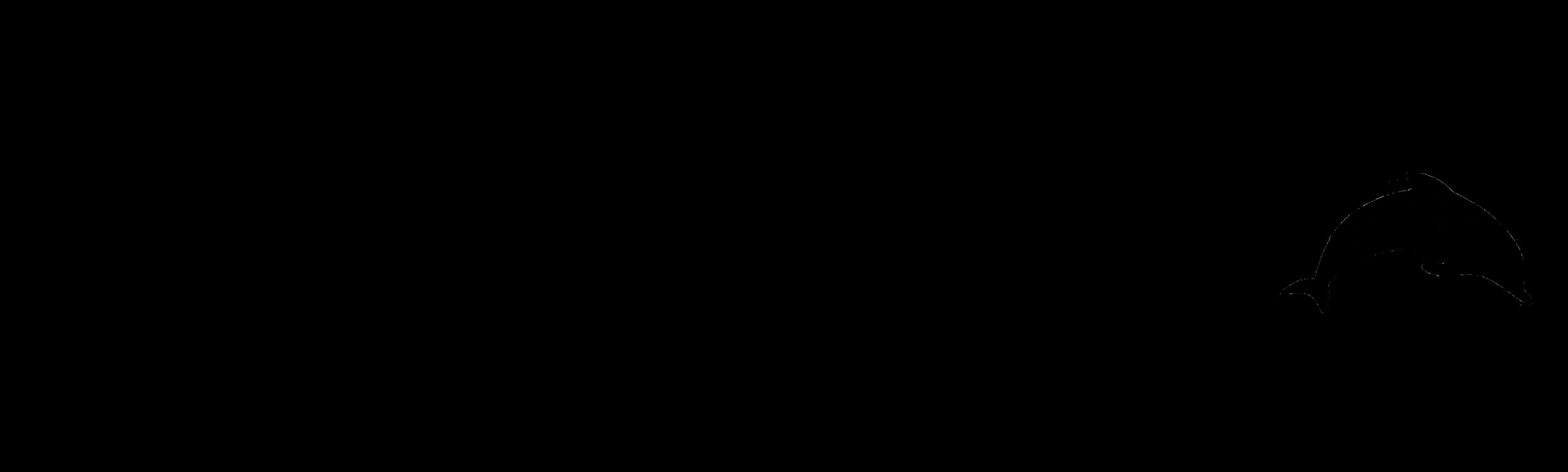 PREMIUM DOLPHIN
