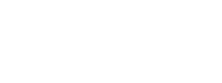 Altero Custom Guitars Official Shop