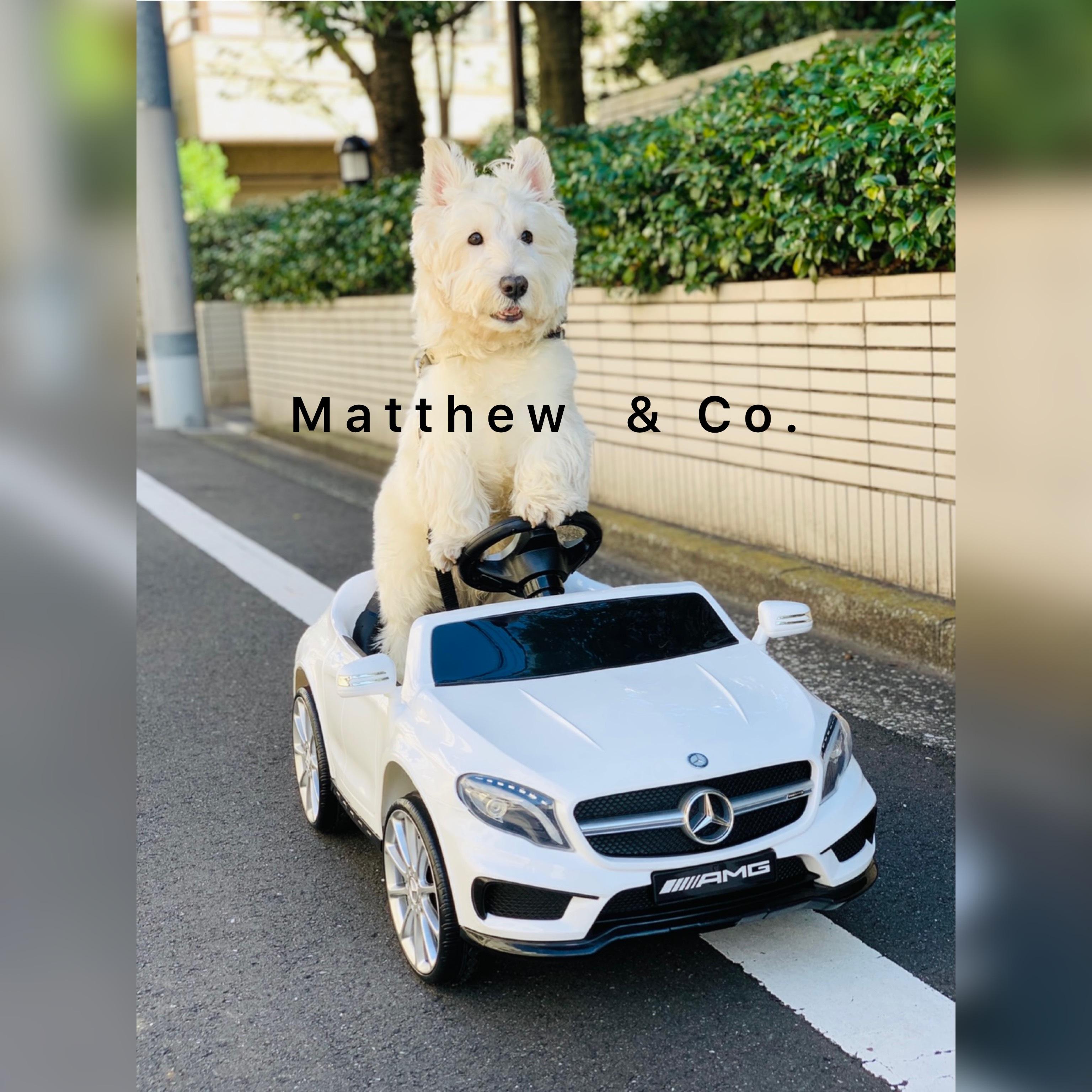 Matthew & Co.
