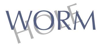 サイクルキャップ専門店wormhole