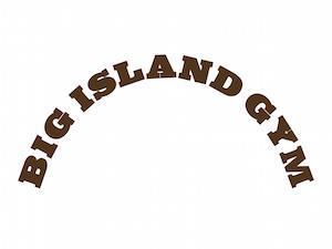 BIG ISLAND GYM