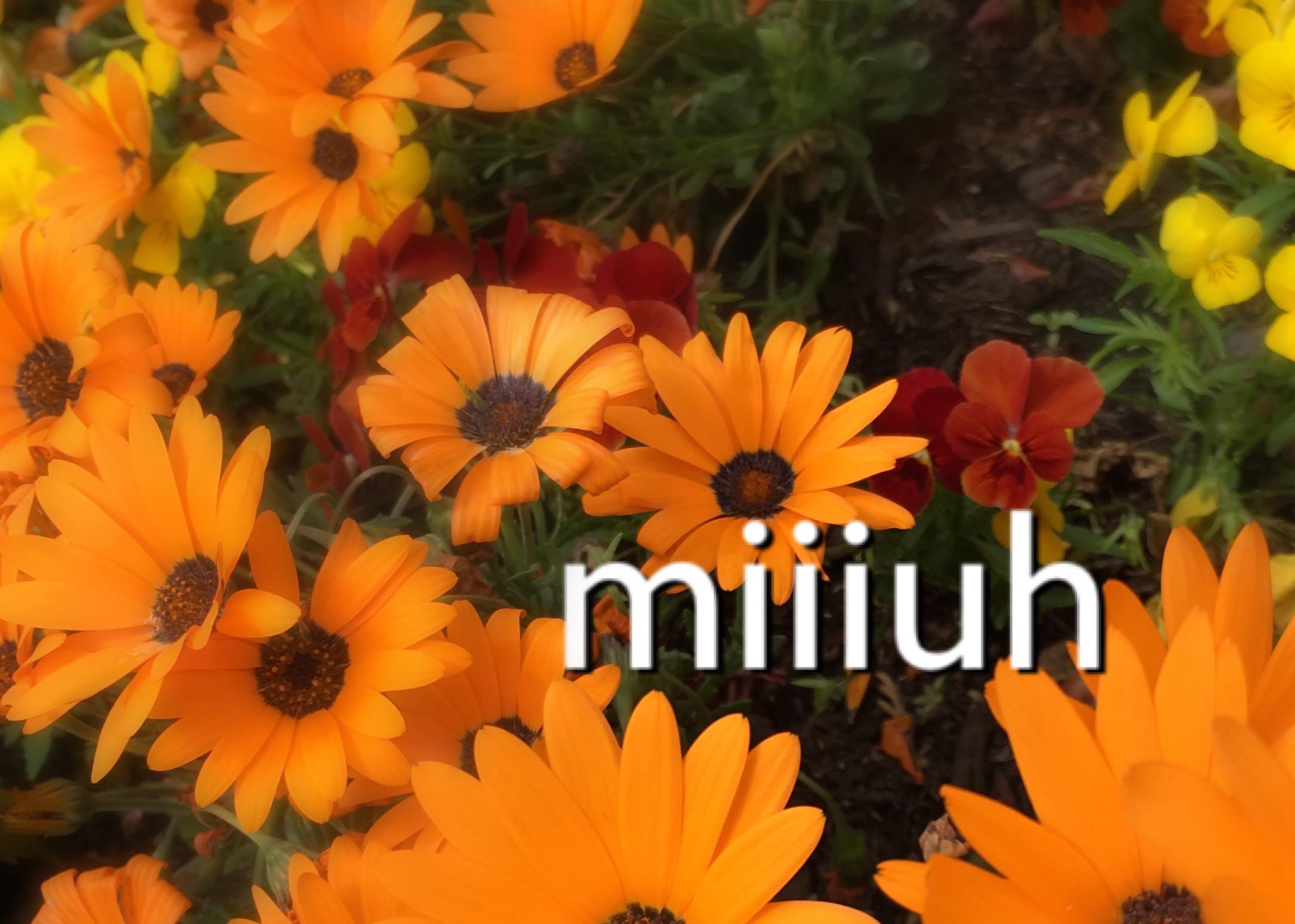 miiiuh