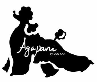 Agapani