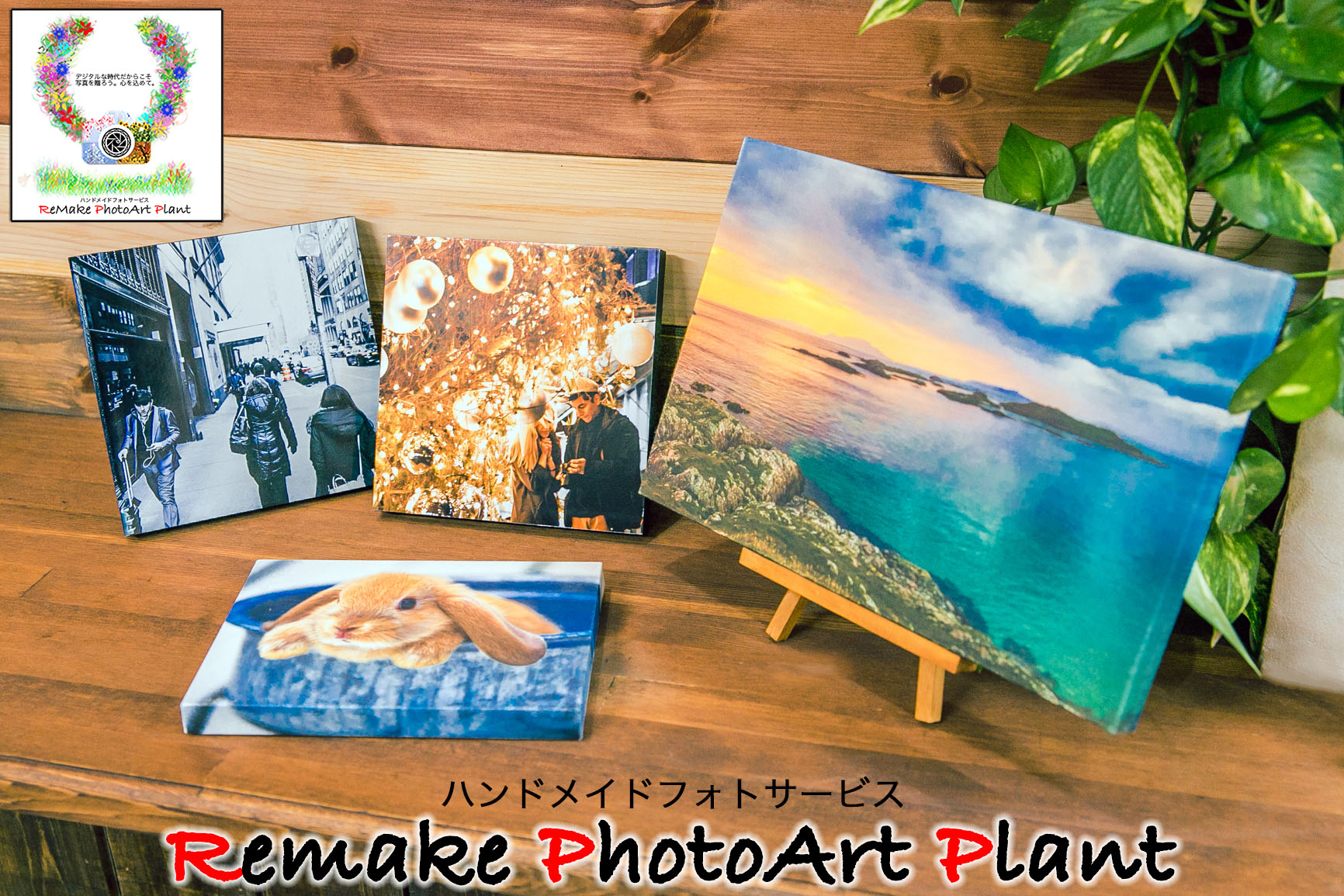 Remake PhotoArt Plant