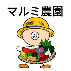無農薬野菜のお店 マルミ農園