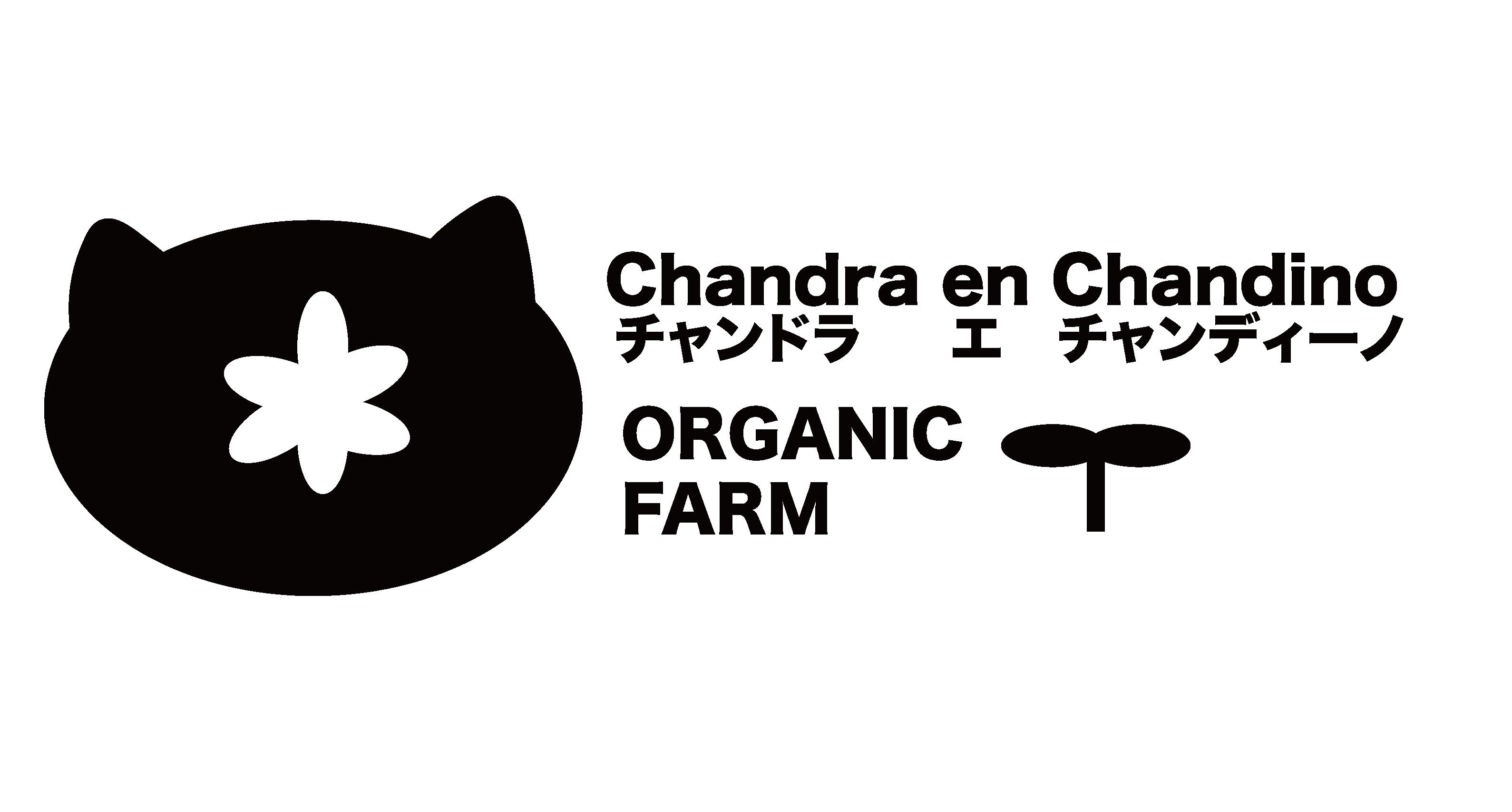 Chandra en Chandino
