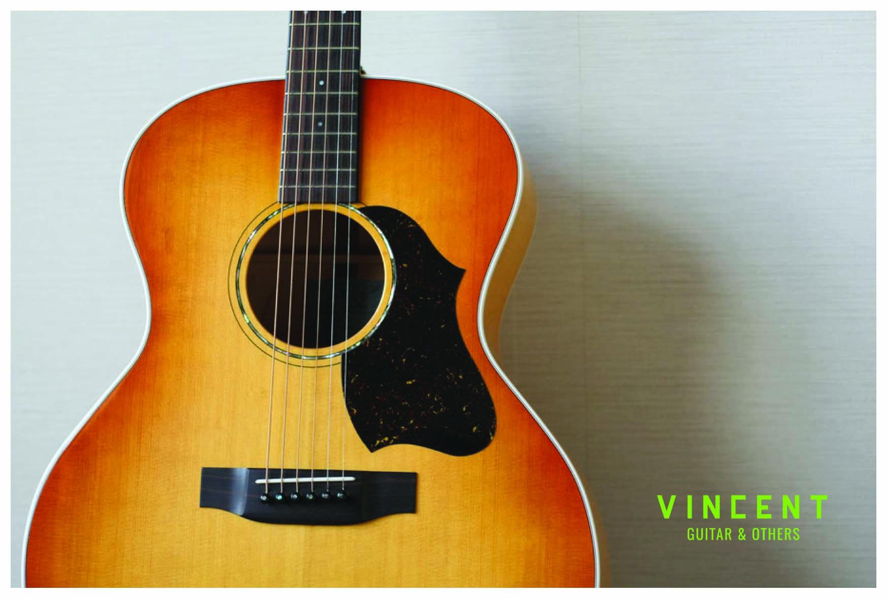 VINCENT guitar&others