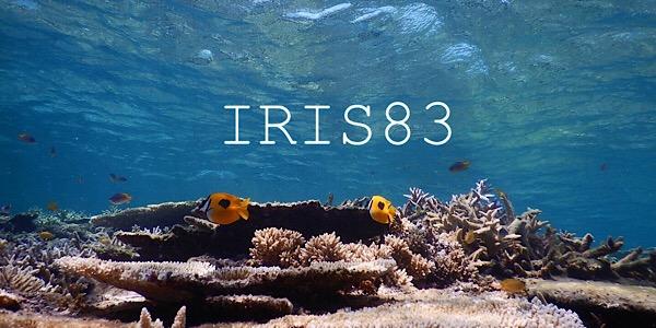 IRIS83