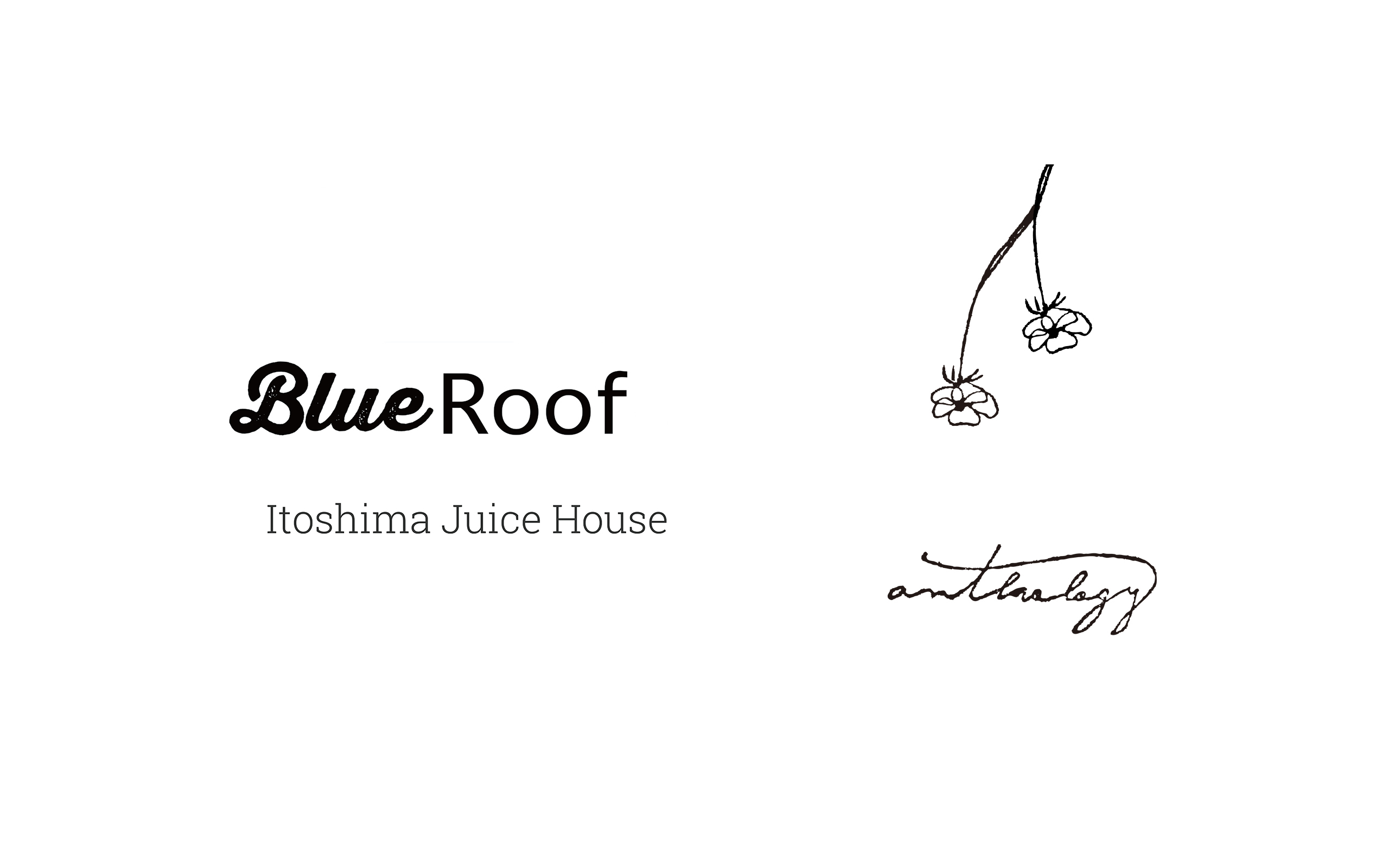 Blue Roof & ANTHOLOGY