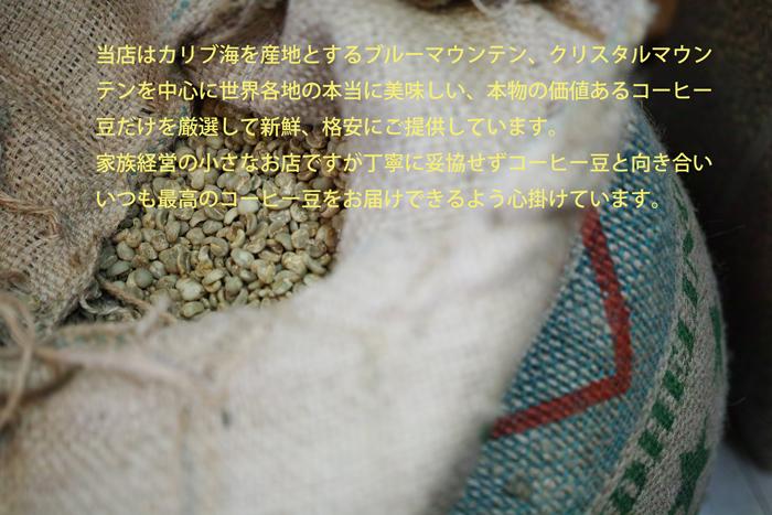 紹介画像3