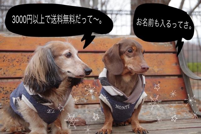 犬服屋CRAZY SEVEN DOG紹介画像2