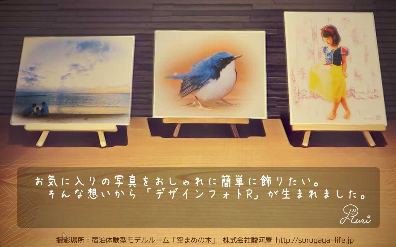 デザインフォトR紹介画像2