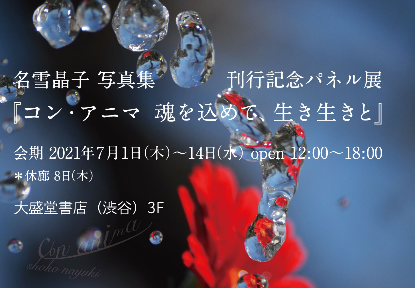 羽鳥書店紹介画像1