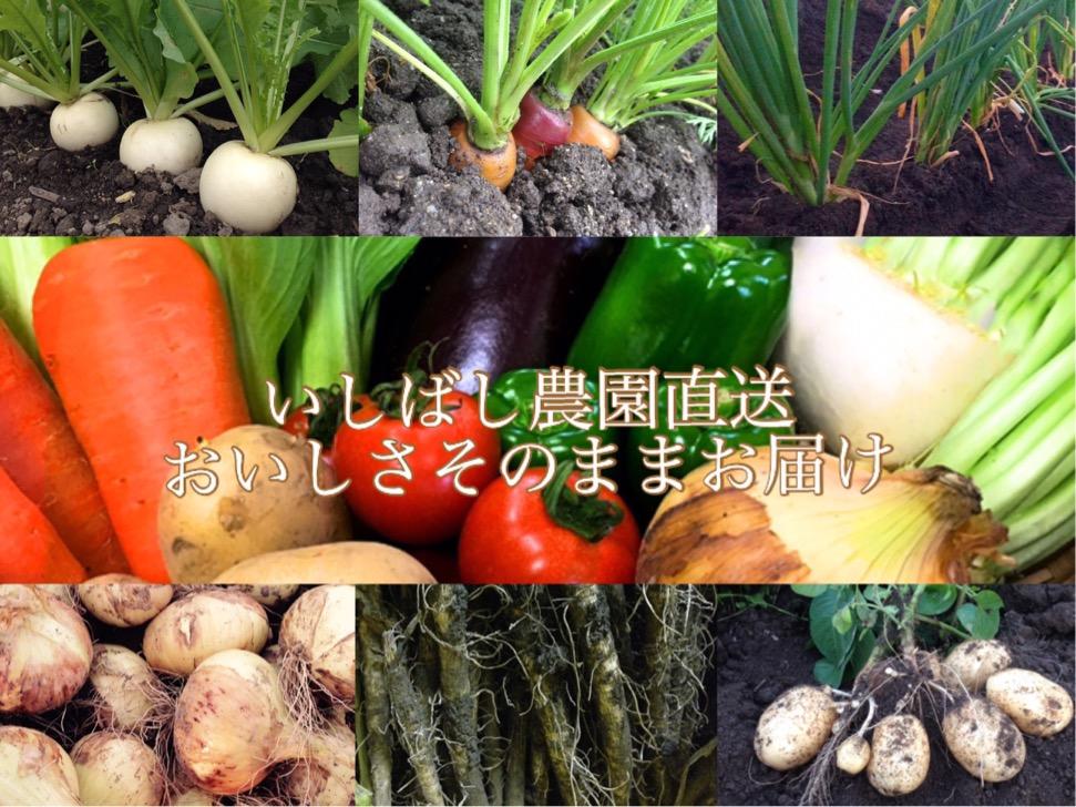 いしばし農園 オンラインストア紹介画像1
